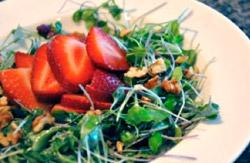 Strawberry MicroGreen Salad